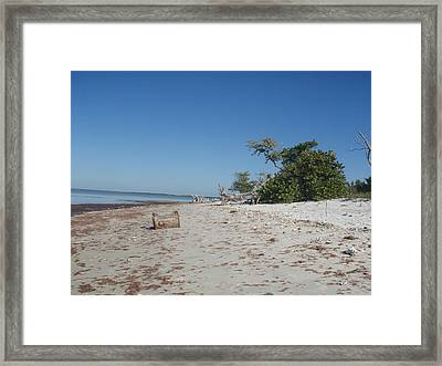 Framed Print featuring the photograph Ye Olde Pirates Chest by Robert Nickologianis