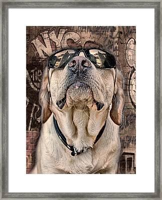 Yeah Man . . . This Is Really High Framed Print by Joachim G Pinkawa