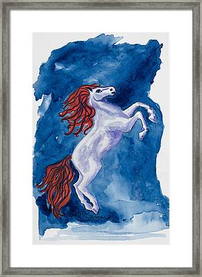 Year Of The Horse Framed Print