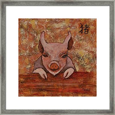 Year Of The Pig Framed Print by Darice Machel McGuire
