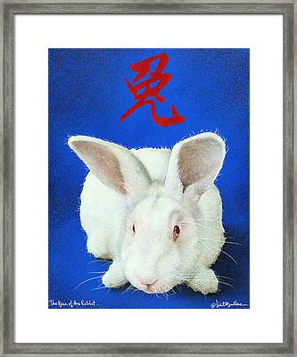 Year Of The Rabbit... Framed Print by Will Bullas
