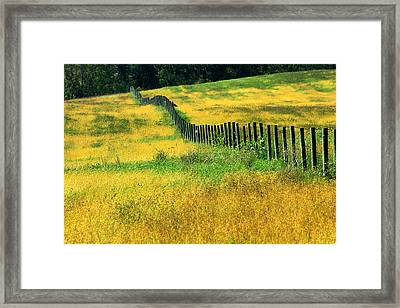Yellow Afternoon Framed Print by Emanuel Tanjala