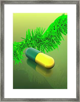Yellow And Green Capsule Framed Print by Victor Habbick Visions