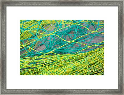 Yellow And Green Nylon Nets Framed Print by Christina Rahm