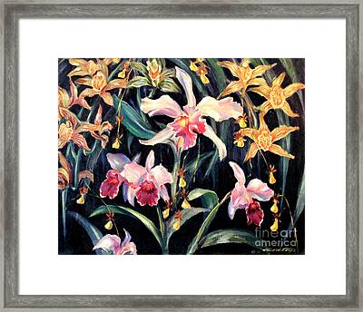 Yellow And Pink Orchids Framed Print