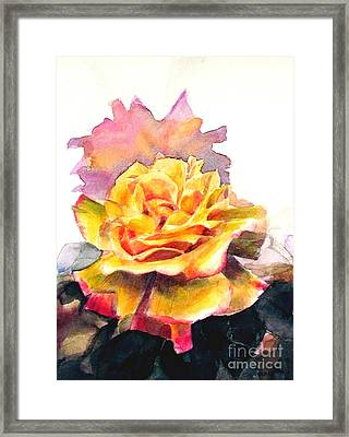 Framed Print featuring the painting Yellow Rose Fringed In Red by Greta Corens