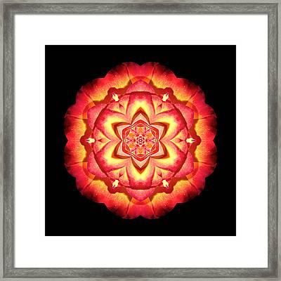 Yellow And Red Rose II Flower Mandalaflower Mandala Framed Print
