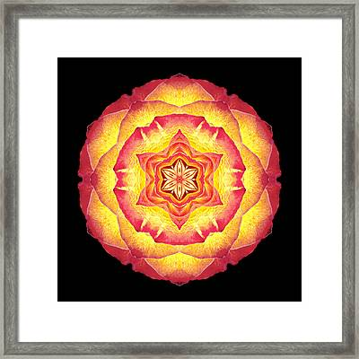 Yellow And Red Rose IIi Flower Mandala Framed Print