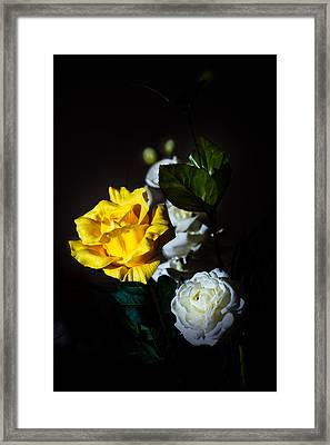 Framed Print featuring the photograph Yellow And White by Cecil Fuselier