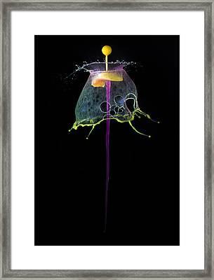 Yellow Antenna Framed Print by Jaroslaw Blaminsky