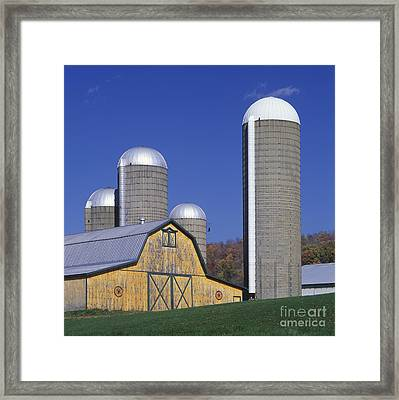 Yellow Barn And Silos - Fm000084 Framed Print by Daniel Dempster