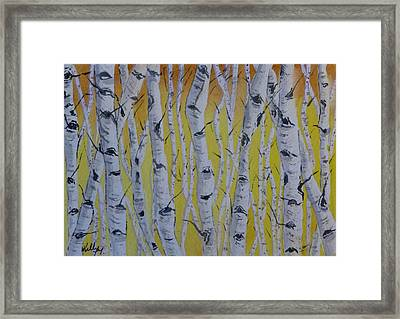 Yellow Birch Framed Print