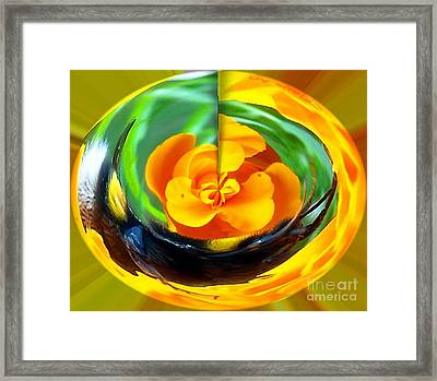 Yellow Blossem Framed Print by Gabriele Mueller