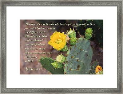 Yellow Blossom On Cactus Romans  Framed Print by Linda Phelps