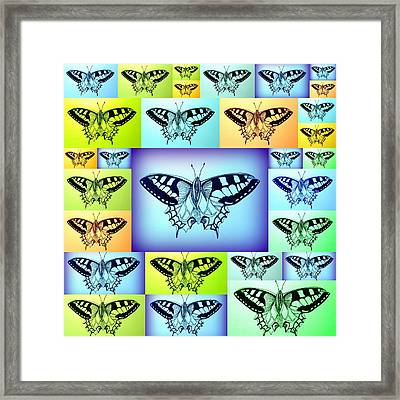 Yellow Blue And Green Butterflies Framed Print by Cathy Jacobs
