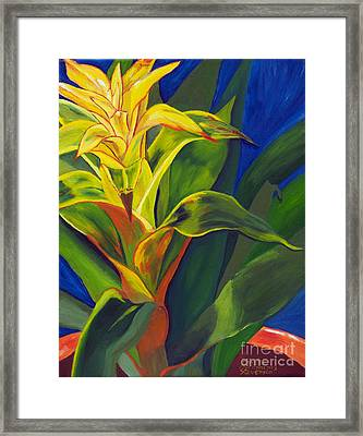 Yellow Bromeliad Framed Print