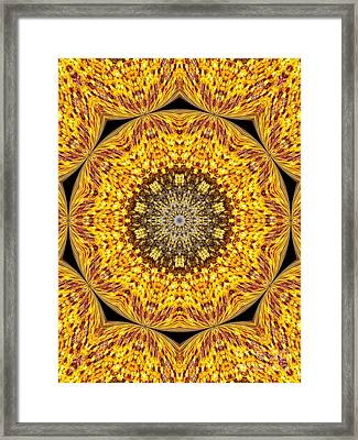 Yellow Burst  Framed Print by Annette Allman