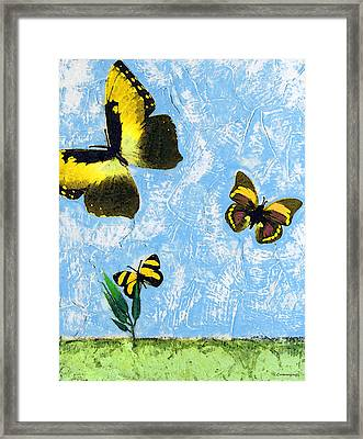 Yellow Butterflies - Spring Art By Sharon Cummings Framed Print by Sharon Cummings