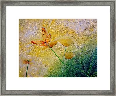 Yellow Butterfly Framed Print by Svetla Dimitrova