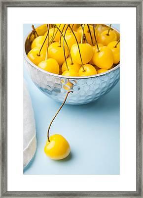 Yellow Cherries 1 Framed Print by Jennifer Blume