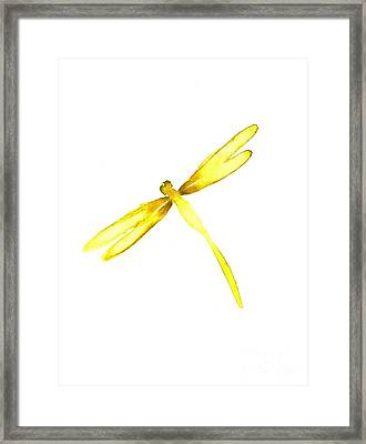 Yellow Dragonfly Framed Print by Mariusz Szmerdt