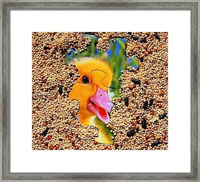 Yellow Duckling Puzzle Framed Print by Jennifer Muller