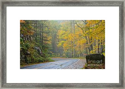 Yellow Fall Roadside Scenic Framed Print