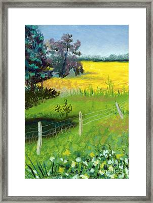 Yellow Field Framed Print by Tanya Provines