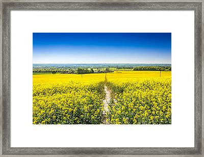 Framed Print featuring the photograph Yellow Fields. by Gary Gillette