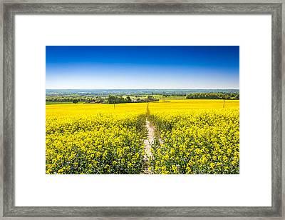 Yellow Fields. Framed Print