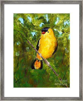 Yellow Finch Framed Print by Valerie Lynch