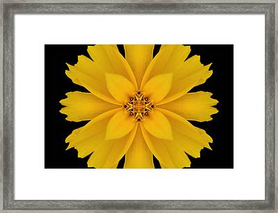Yellow Flower Kaleidoscope Abstract Framed Print by Don Johnson