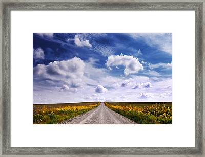 Yellow Flower Road Framed Print