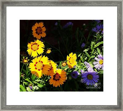 Framed Print featuring the photograph Yellow Flower by Rose Wang
