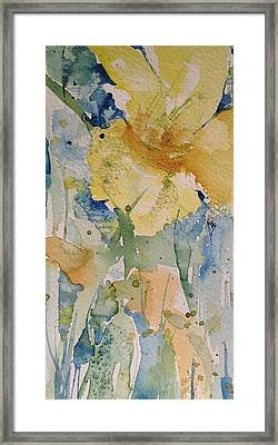 Yellow Flower Study Framed Print by Robin Miller-Bookhout