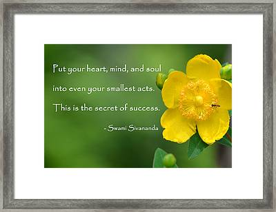 Yellow Flower With Success Quote Framed Print