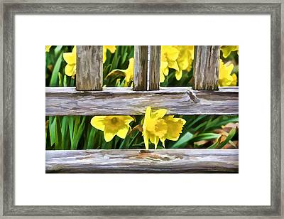 Yellow Flowers By The Bench Framed Print by David Letts