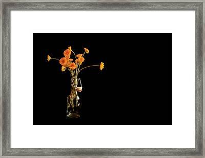 Orange Flowers On Black Background Framed Print