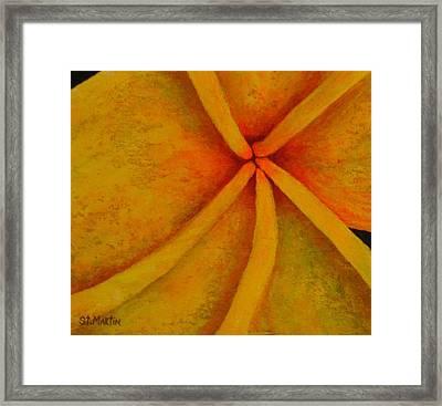 Yellow Frangipani Framed Print by Annie St Martin
