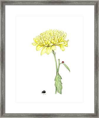 Yellow Fun Framed Print by Heidi Kriel
