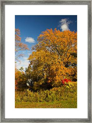 Framed Print featuring the photograph Yellow Giant by Jose Oquendo