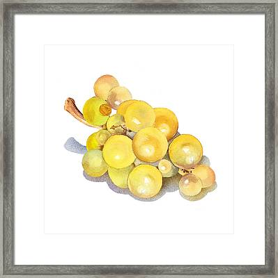 Yellow Grape Framed Print by Irina Sztukowski