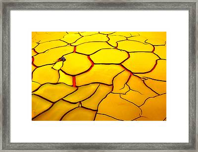 Yellow Ground, Red Heart Framed Print