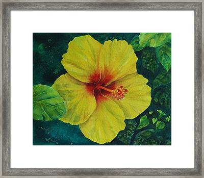 Yellow Hibiscus Framed Print by Donna Pierce-Clark