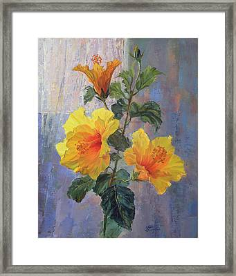 Yellow Hibiscus Flower Framed Print