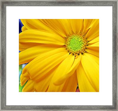 Yellow Framed Print by Ioanna Papanikolaou