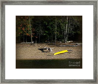 Yellow Kayak Framed Print