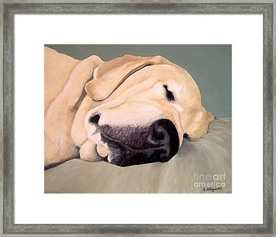 Yellow Lab - A Head Pillow Is Nice Framed Print