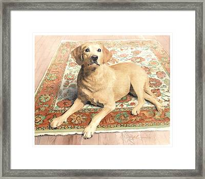 Yellow Lab On A Rug Watercolor Portrait Framed Print by Mike Theuer