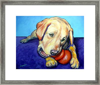 Yellow Lab With Kong Framed Print by Dottie Dracos